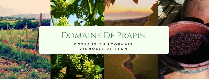Domaine De Prapin.